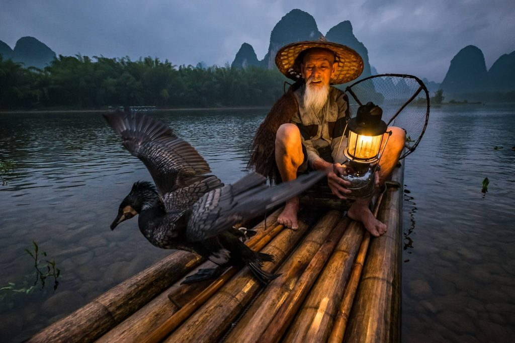 A cormorant fisherman waiting near the shore in China